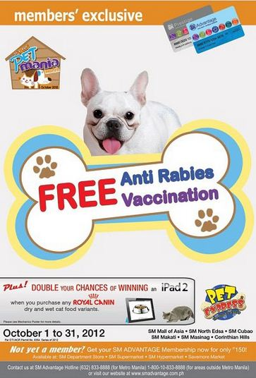 Free Anti Rabies Vaccination Pageviewonline