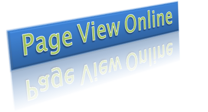 Page View Online